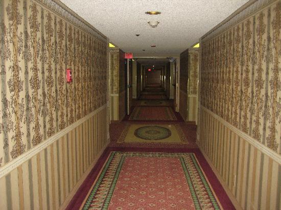 My Spooky Night At 'The Shining' Hotel - The Daily Beast
