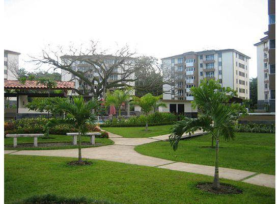 Costa Linda Condominiums: Costa Linda Grounds area
