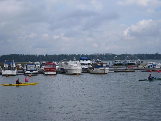 Radisson Blu Hotel, Espoo: 前に湖 カヌーを楽しむ人たちがいました