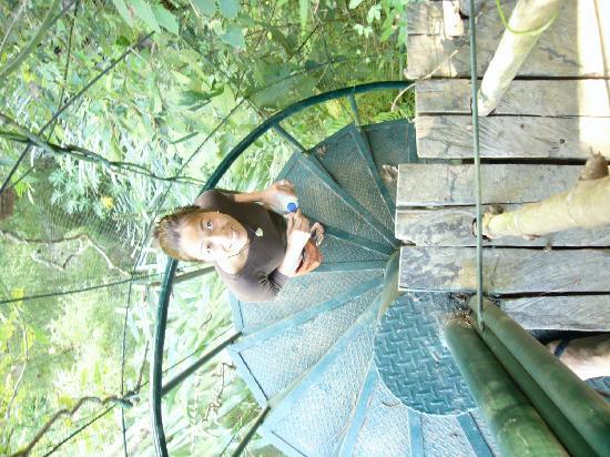 Bambu Indah: Hiking down to the river