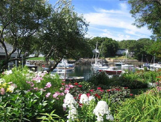 Perkins Cove : boats & blossoms... a lovely combo !