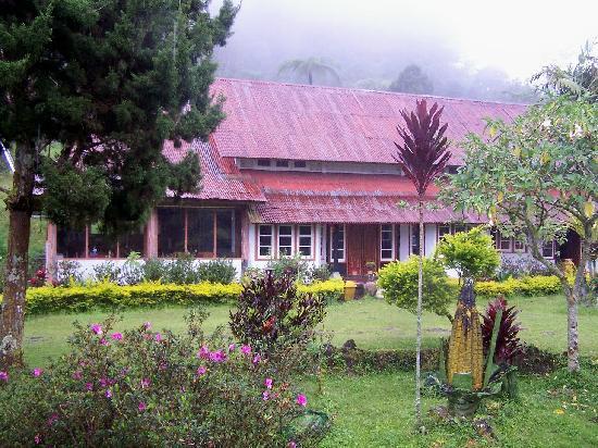 Ashram Guesthouse: restaurant