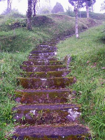 Ashram Guesthouse: steps to rooms