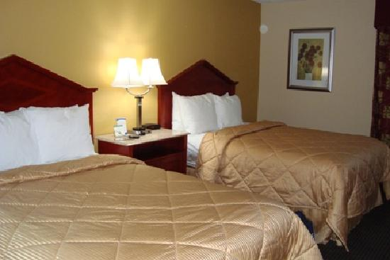 Comfort Inn: standard double room