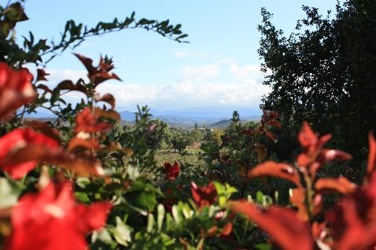 Yotclub B&B : From the garden to the Swartberg Mountains