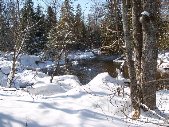 Silent Sport Lodge Bed and Breakfast: Snowshoeing on the property