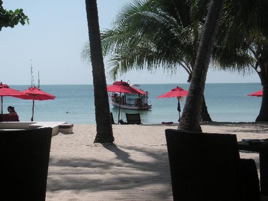 Anantara Rasananda Koh Phangan Villas: View from restaurant