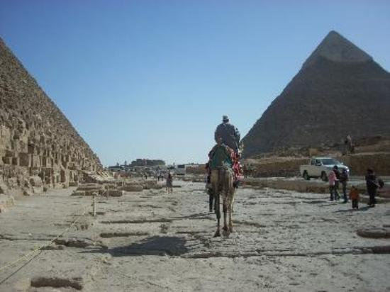 A camel drover between the pyramids of Khufu and Khafre.