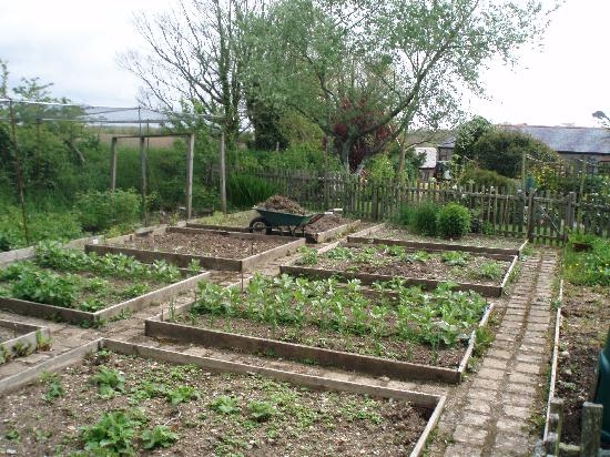 Roundhouse Barn: The vegetable garden