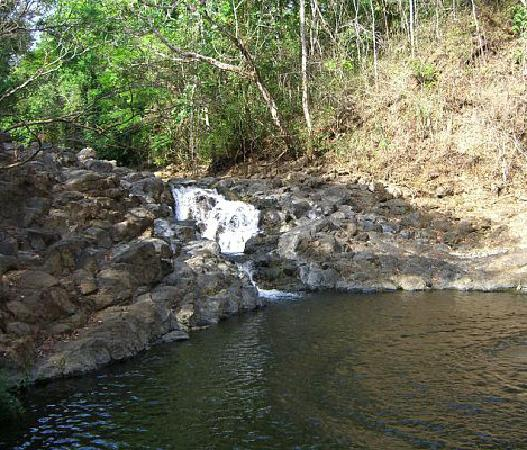 Nature Lodge Finca los Caballos: The waterfall/natural pool that we rode the horses to