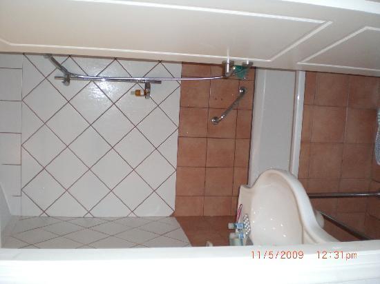 Bitzaro Grande Hotel: Bathroom