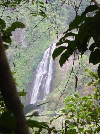 Cañón de San Cristóbal Barranquitas Puerto Rico Ricky  López787-516-6194