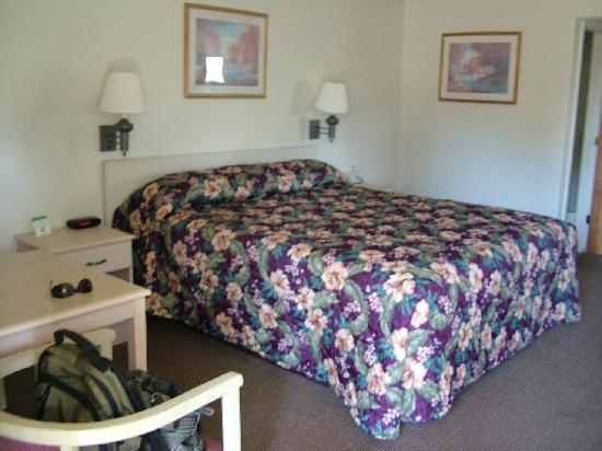 Americas Best Value Inn- Ukiah : Room at Vagabond Inn Ukiah
