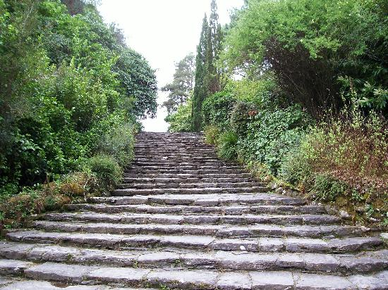 Glengarriff, Irlande : Steps on the island