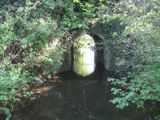 Ballygally Castle: Gardens 3