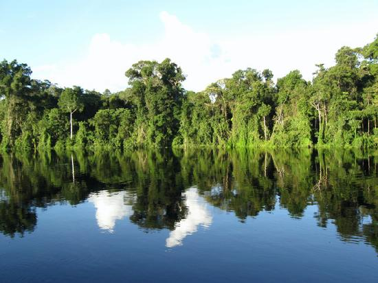Pacaya Samiria: Samiria River