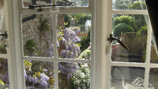 Rooks Hill Guest House: The beautiful Wisteria