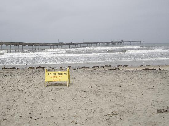 USA Hostels Ocean Beach : Ocean Beach