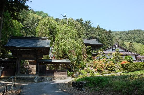 Shiojiri, Japón: 長興寺 参道から