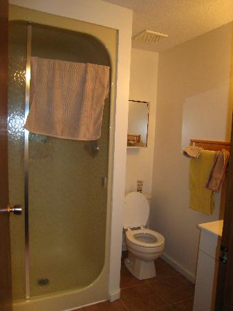 Mountain View Bed & Breakfast: Ensuite bathroom