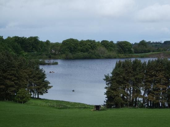 Tulfarris Hotel and Golf Resort: Nearby view of Blessington Lake