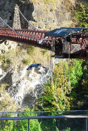 AJ Hackett Bungy New Zealand: :0