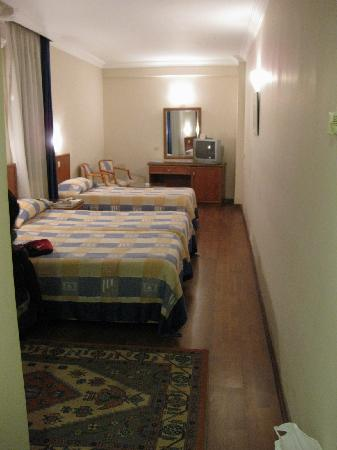 Grand Hotel Halic : Room Interior