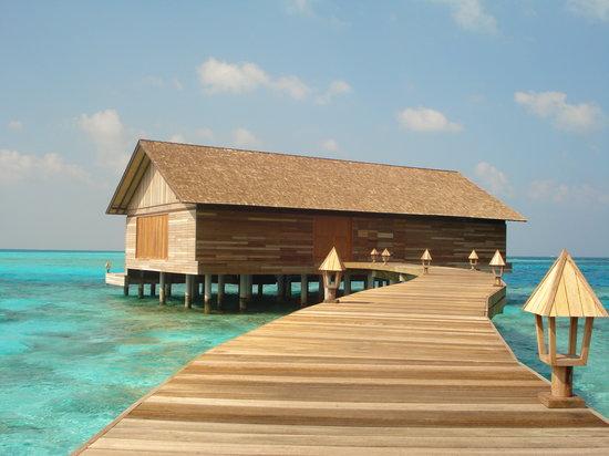 Gangehi Island Resort: ristorante overwater