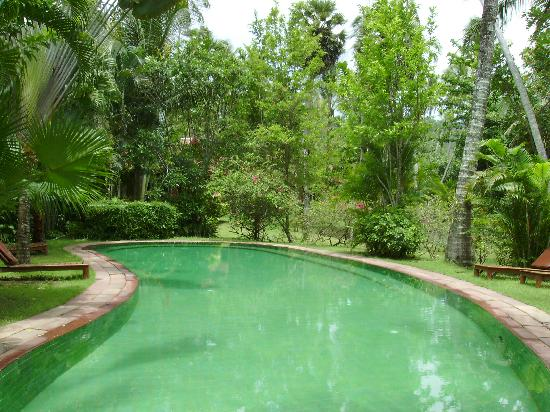Baan Mai Cottages: Pool