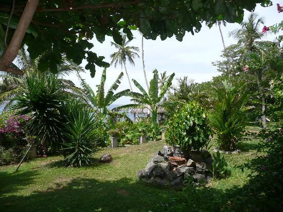 Villa Lucky Star: Garten Eden