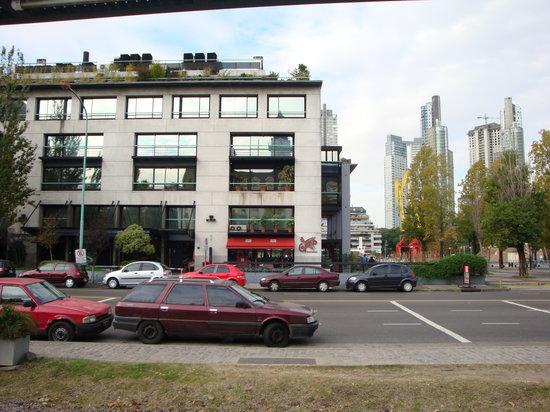 Il Gatto Trattorias : View of the restaurant