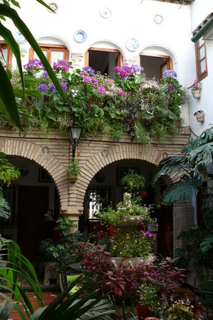 Pension los Arcos : The interior to the Hostal is lovely
