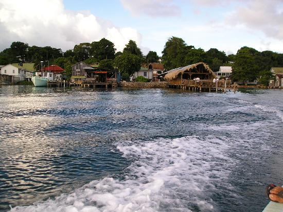 Deep Blue Resort Utila: the harbor