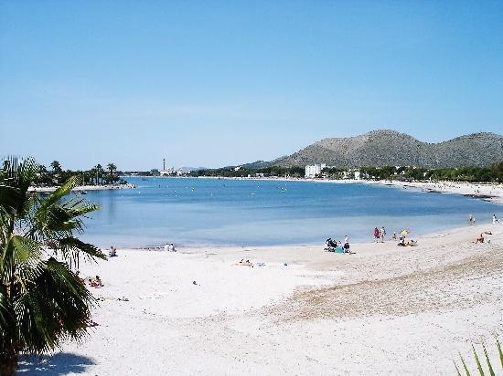 Hotel JS Sol de Alcudia: Puerto Alcudia