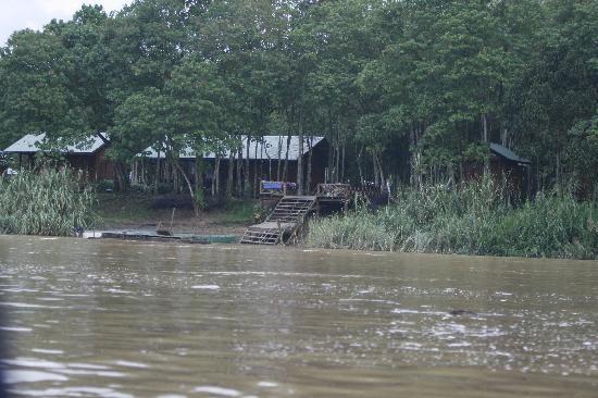 Trekkers Lodge Kinabatangan: The site