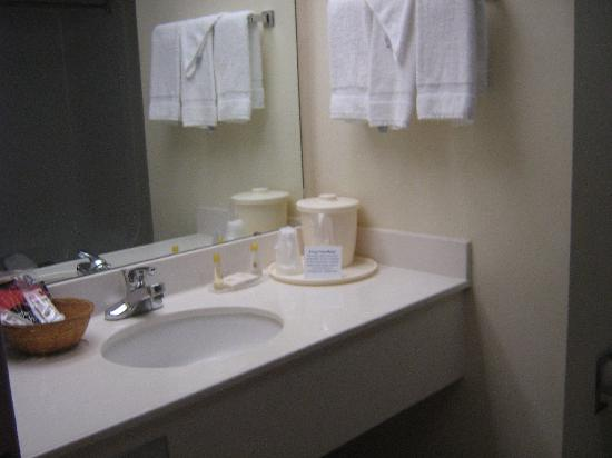 Comfort Inn Blythewood: washroom2