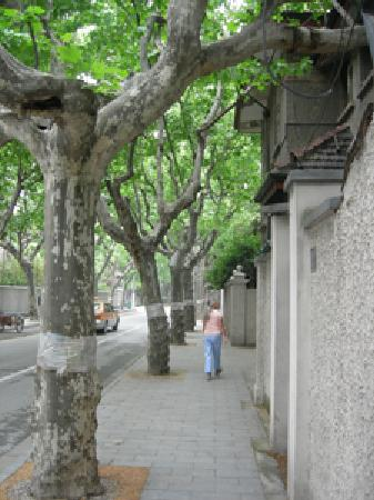 Jinchen Hotel: Walking a street near the hotel.