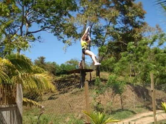 Sandy Bay, Honduras: Ziplining in Roatan