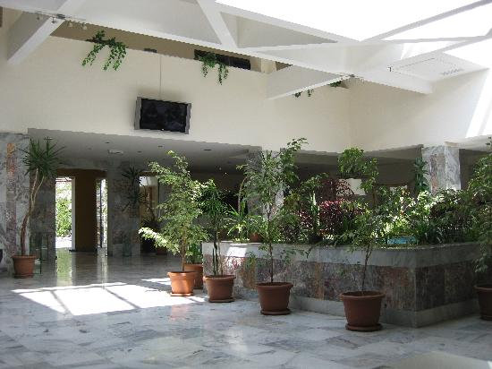 Hotel Regineh: Lobby 1