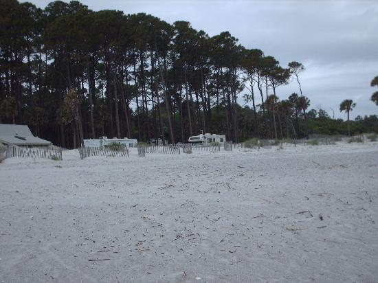 Hunting Island State Park Campground : loop 3 campsites(60's) from the beach