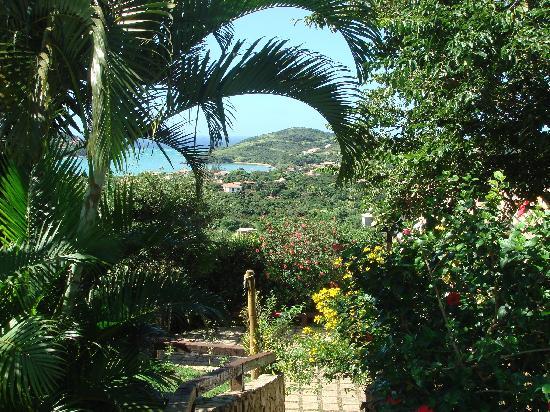 Tropico de Capricornio: Vue du jardin
