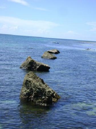 Midway White Beach Resort: Pic2