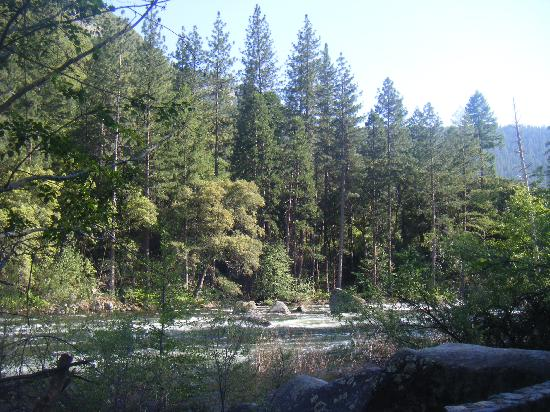 Hampton Inn & Suites - Merced : Beautiful scenery of Yosemite Park