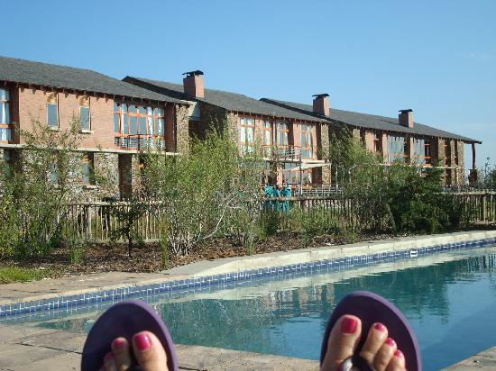 Riboville: pool