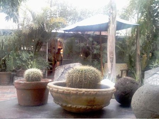Casa Tlaquepaque Hotel-Galeria: Courtyard 2