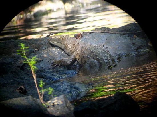 Pirate Cove : Corcovado Park - beware the crocodillos!