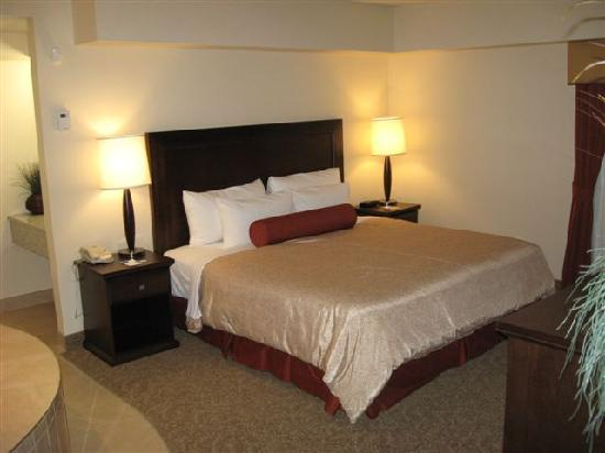 Travelodge Hotel Saskatoon: Room pic