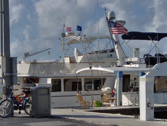 Caloosa Cove Resort: The marina
