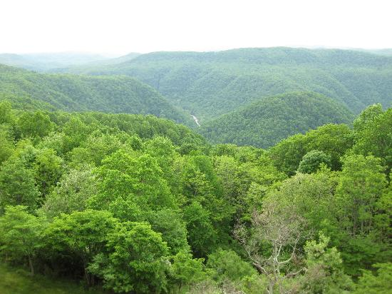 Pipestem Resort State Park: View from McKeever Lodge
