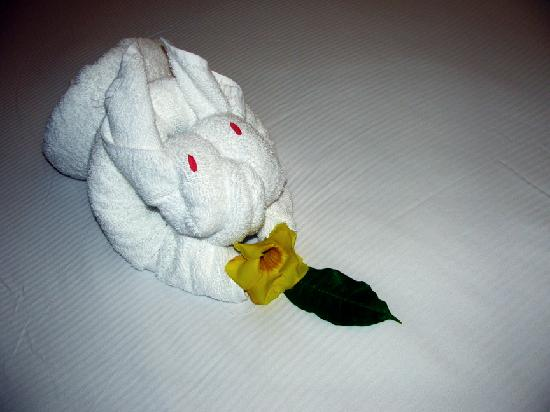 "Parador Resort and Spa: The Infamous ""Towel Animals"" - a Bunny on this day!"